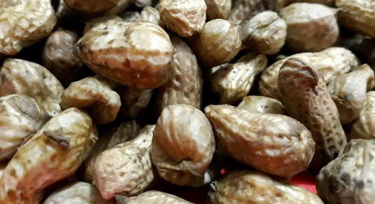 Kacang rebus adalah salah satu kudapan yang dapat membuat penyukanya sulit berhenti sebelum habis. © mwahyunz.id